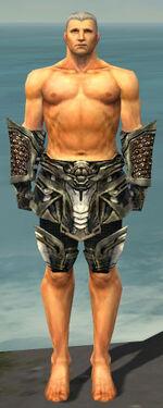 Warrior Elite Kurzick Armor M gray arms legs front.jpg