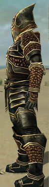 Warrior Kurzick Armor M gray side.jpg
