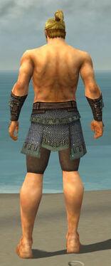 Warrior Tyrian Armor M gray arms legs back.jpg