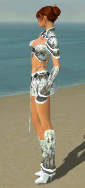 Elementalist Elite Iceforged Armor F gray side.jpg