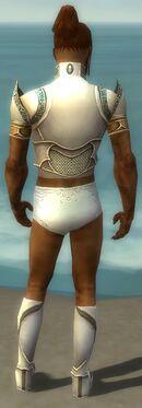 Paragon Asuran Armor M gray chest feet back.jpg
