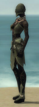 Ritualist Kurzick Armor F gray side.jpg