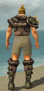 Warrior Elite Charr Hide Armor M gray chest feet back.jpg