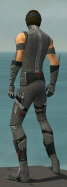 Assassin Canthan Armor M gray back.jpg