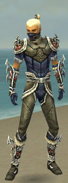Assassin Norn Armor M gray front.jpg