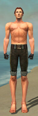 Mesmer Tyrian Armor M gray arms legs front.jpg