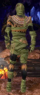 Ritualist Ancient Armor M dyed back.jpg