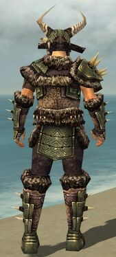 Warrior Elite Charr Hide Armor M gray back.jpg