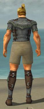 Warrior Tyrian Armor M gray chest feet back.jpg