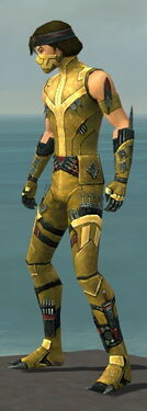 Assassin Canthan Armor M dyed side.jpg