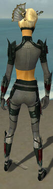 Assassin Seitung Armor F gray back.jpg