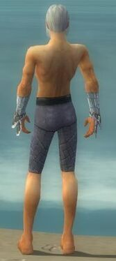 Elementalist Elite Iceforged Armor M gray arms legs back.jpg