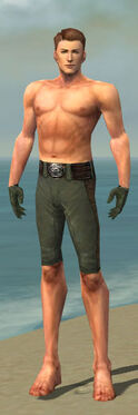 Mesmer Enchanter Armor M gray arms legs front.jpg