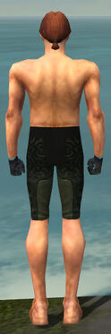Mesmer Sunspear Armor M gray arms legs back.jpg