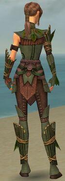Ranger Druid Armor F gray back.jpg