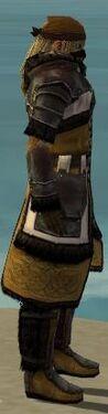 Ranger Norn Armor M dyed side.jpg