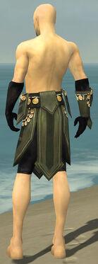 Ritualist Elite Kurzick Armor M gray arms legs back.jpg