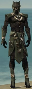 Ritualist Kurzick Armor M gray front.jpg