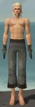 Elementalist Sunspear Armor M gray arms legs front.jpg