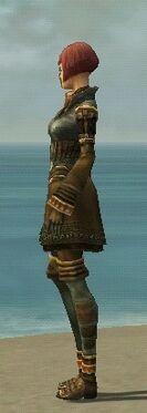 Mesmer Ancient Armor F gray side.jpg