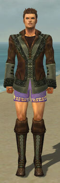 Mesmer Istani Armor M gray chest feet front.jpg
