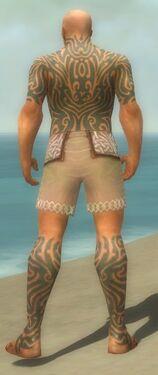 Monk Flowing Armor M gray chest feet back.jpg