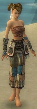 Monk Luxon Armor F gray arms legs front.jpg