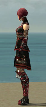 Necromancer Canthan Armor F dyed side.jpg