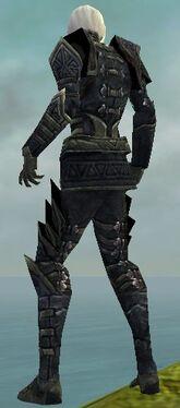 Necromancer Elite Cultist Armor M gray back.jpg