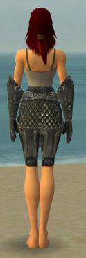 Warrior Elite Platemail Armor F gray arms legs back.jpg