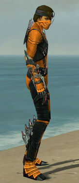 Assassin Elite Canthan Armor M dyed side.jpg