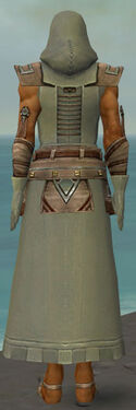Dervish Istani Armor M gray back.jpg