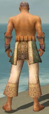 Monk Vabbian Armor M gray arms legs back.jpg