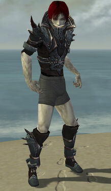 Necromancer Asuran Armor M gray chest feet front.jpg