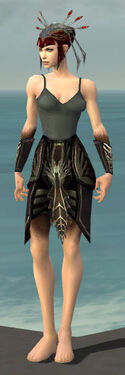 Necromancer Istani Armor F gray arms legs front.jpg