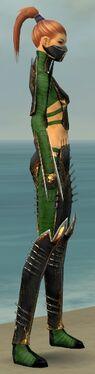Assassin Exotic Armor F dyed side alternate.jpg