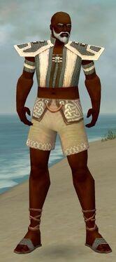 Monk Elite Saintly Armor M gray chest feet front.jpg