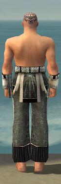 Monk Elite Sunspear Armor M gray arms legs back.jpg