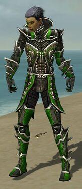 Necromancer Elite Kurzick Armor M dyed front.jpg