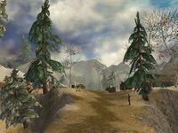 Traveler's Vale.jpg
