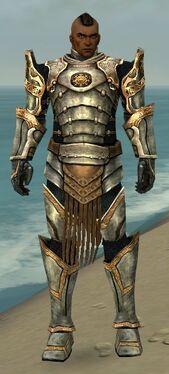 Warrior Sunspear Armor M nohelmet.jpg