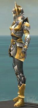 Warrior Templar Armor F dyed side.jpg
