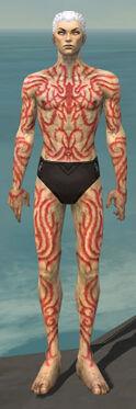 Necromancer Scar Pattern Armor M dyed front.jpg