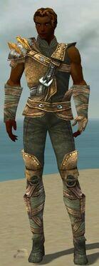 Ranger Tyrian Armor M gray front.jpg
