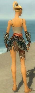 Warrior Luxon Armor F gray arms legs back.jpg
