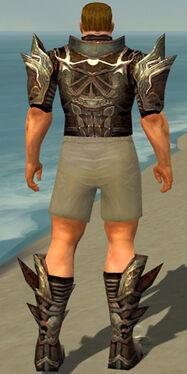 Warrior Monument Armor M gray chest feet back.jpg
