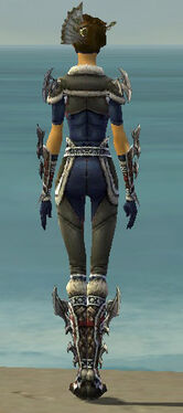 Assassin Norn Armor F gray back.jpg