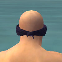 Blindfold M gray back.jpg