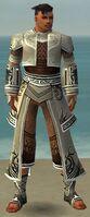 Monk Deldrimor Armor M gray front.jpg