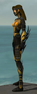Assassin Vabbian Armor F dyed side.jpg